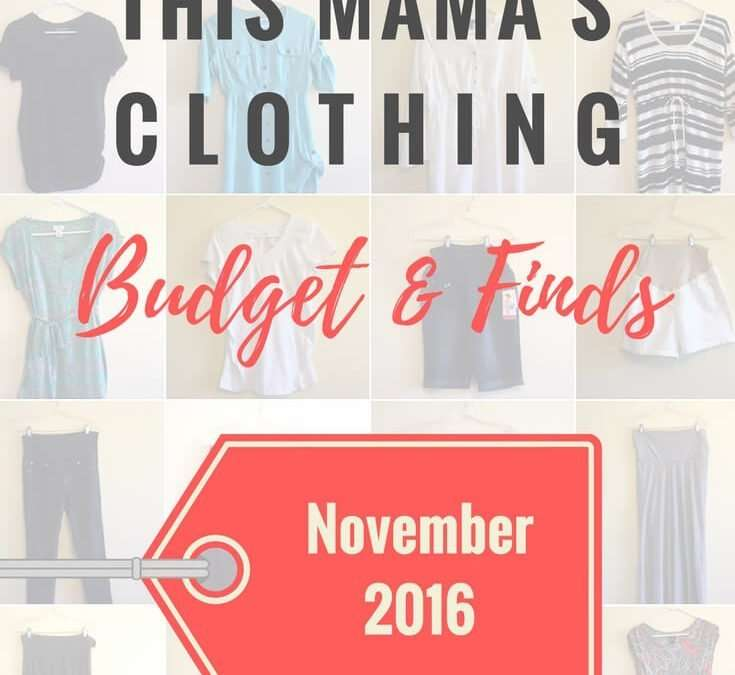 This Mama's Clothing Budget and Finds: November 2016